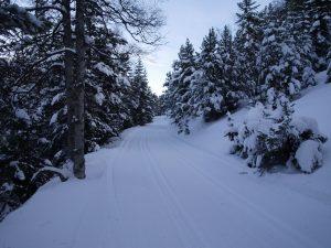 Pirineo Catalán Nieve