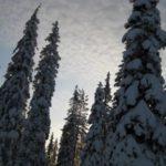 ¿Quién se va a pasar un finde de nieve?