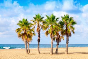 playas bandera azul españa
