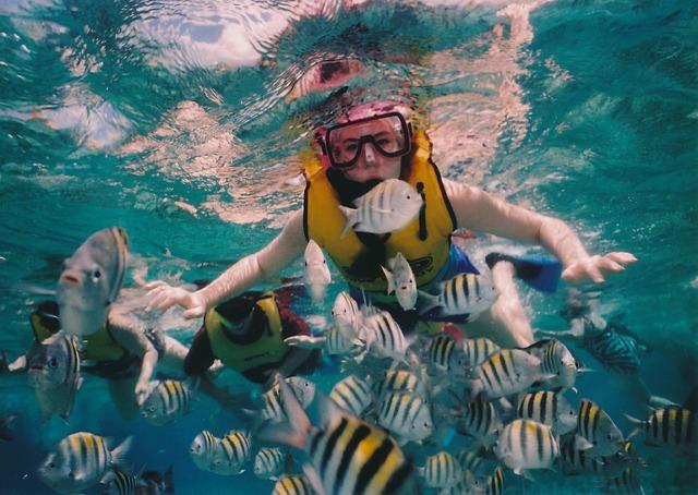 Por qué el snorkel está de moda